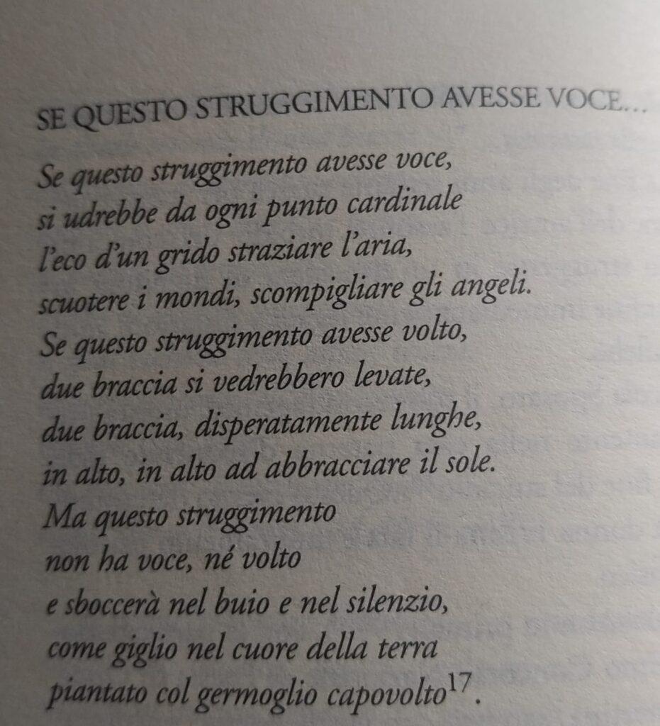 Poesia di Rosa Frisina dal titolo Se Questo Struggimento Avesse Voce