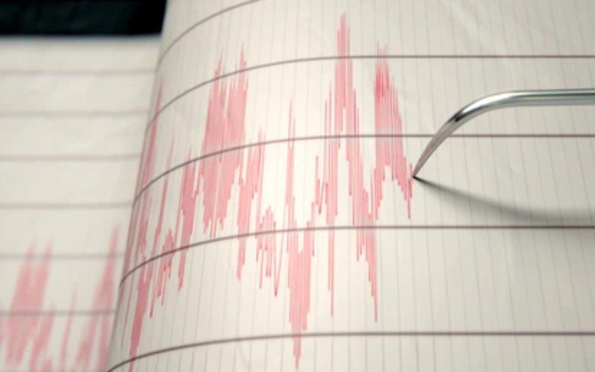 terremoti in calabria sismografo